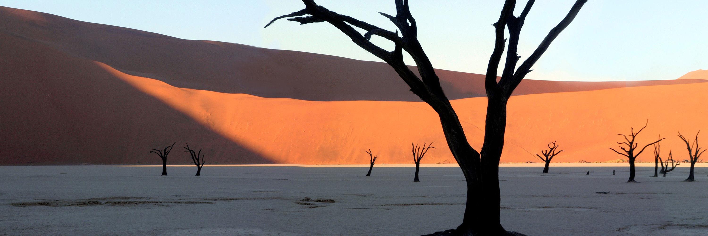 deadvlei & dunes - cullinan namibia tours