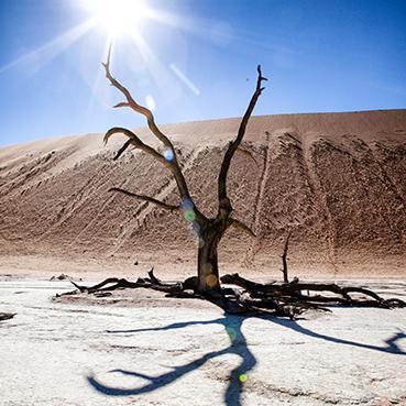 Deadveli - Namibia Sossusvlei Desert Adventure