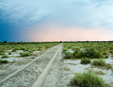 The open road across Etosha Pan