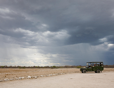 Etosha Grey Clouds - Group Tours in Namibia