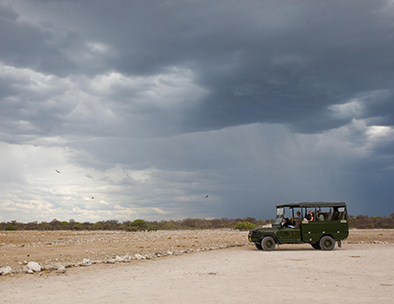 Evening in Etosha - Individual Travel Tours