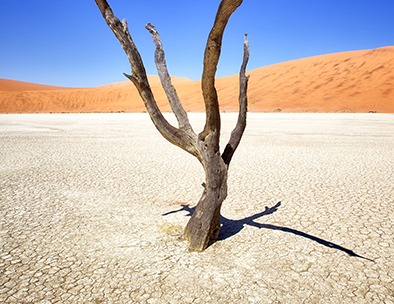 dry earth in namibia